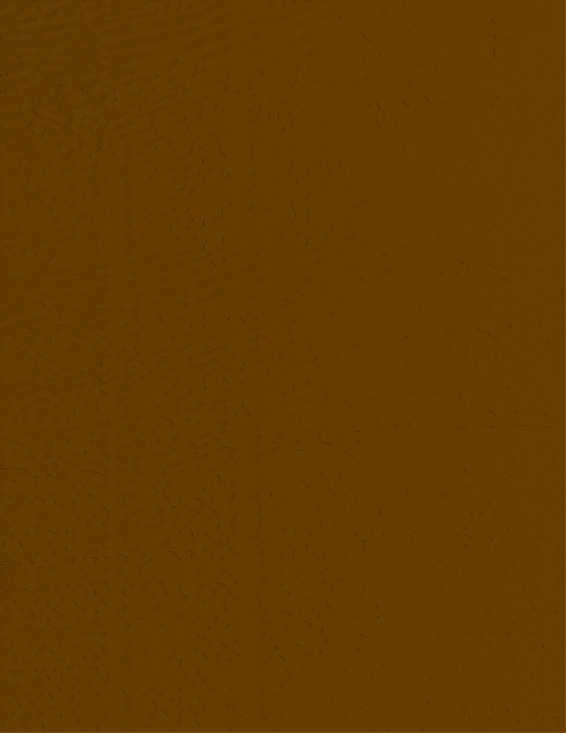 Clay Brown RAL 9006