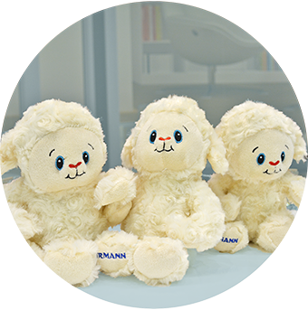 Free cuddly sheep toy with every insulated Hormann product