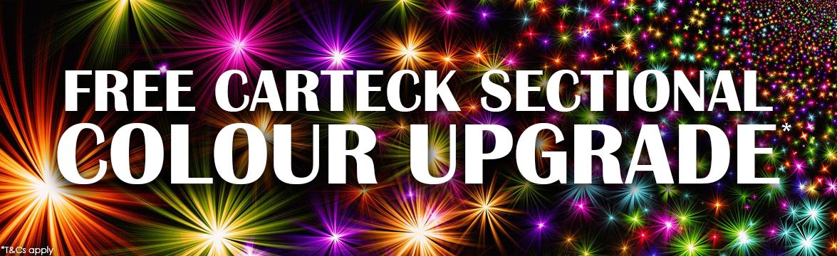 Carteck Winter Sectional Garage Doors Colour Upgrade