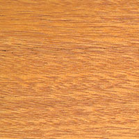 Cedar Doors - Golden Oak